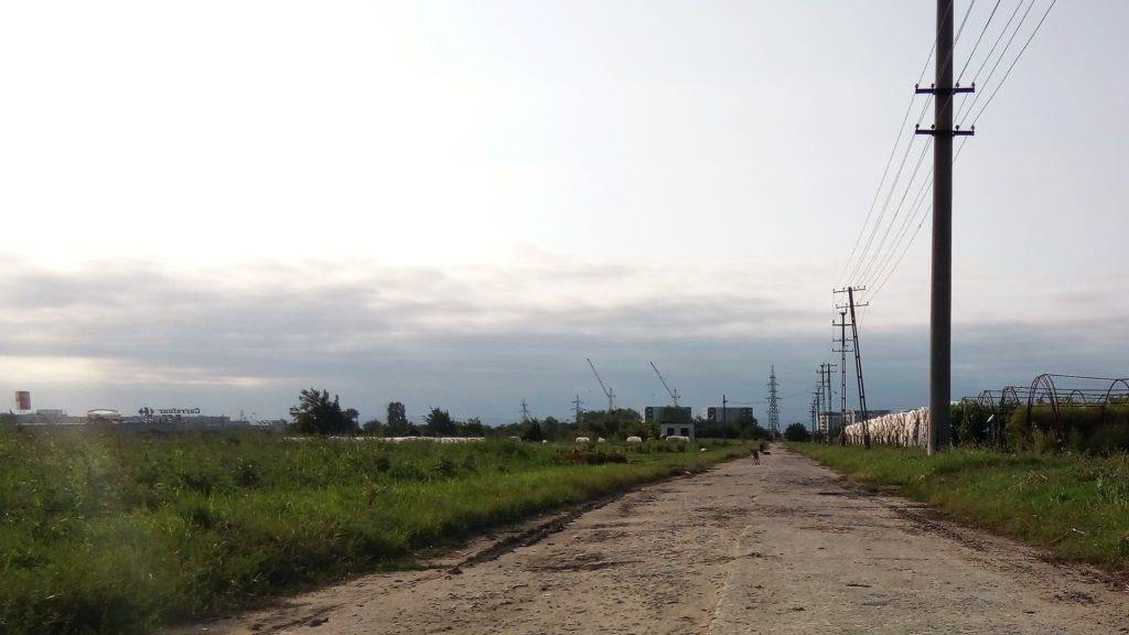 În zare se văd supermarketurile și cartierele rezidențiale care au fost ridicate pe terenul stațiunii de cercetare. Foto: Ionela Gavriliu