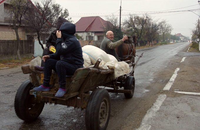 Fact-checking cu Olguța Vasilescu: cum au ajuns țăranii din Buzău să aibă canalizare doar pe Facebook