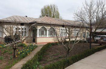 Minunile pandemiei: cum a ajuns o bucătăreasă din Giurgiu să câștige un contract de 12 milioane de euro pentru măști de protecție