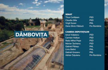 Candidații județului Dâmbovița