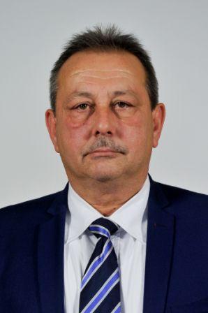 Liviu Lucian Mazilu