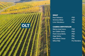 Candidații județului Olt