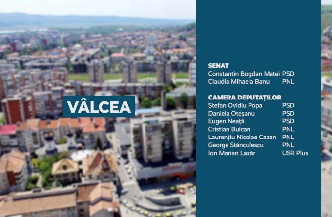 Candidații județului Vâlcea