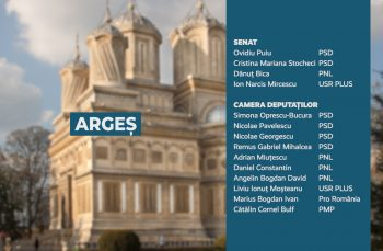Candidații județului Argeș