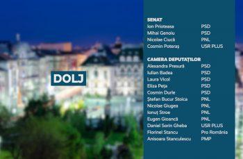 Candidații județului Dolj