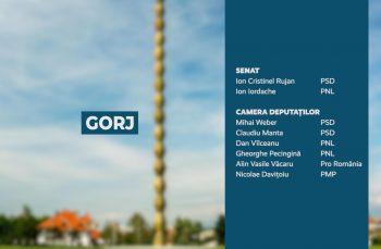 Candidații județului Gorj