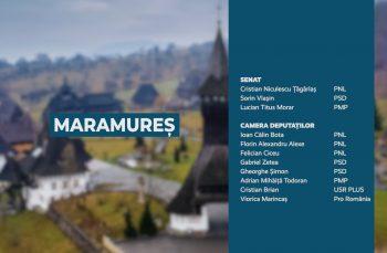 Candidații județului Maramureș