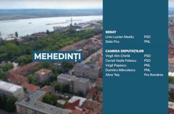 Candidații județului Mehedinți