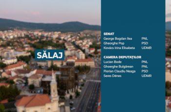 Candidații județului Sălaj