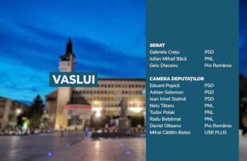 Candidații județului Vaslui